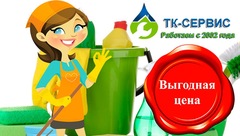 услуги химчистки на дому от ТК-сервис